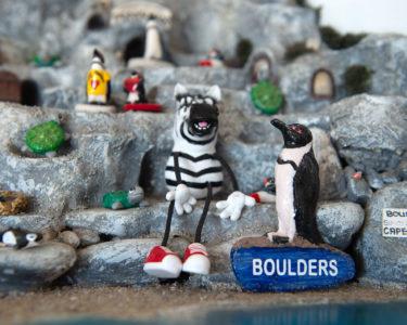 Boulders Beach Hotel Penguins